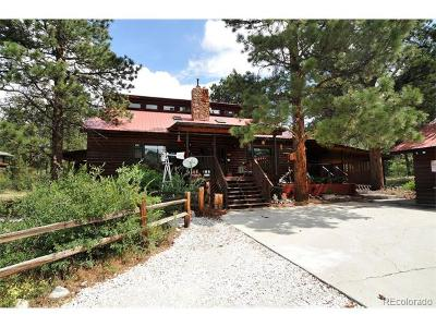 Salida Single Family Home Active: 16820 County Road 240