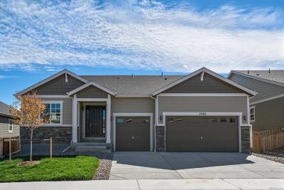 Castle Rock Single Family Home Active: 7220 Greenwater Circle