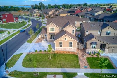 Longmont Single Family Home Active: 1413 Rustic Drive