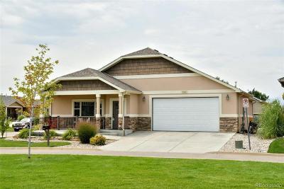 Berthoud Single Family Home Active: 765 Grays Peak Lane