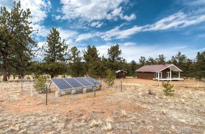 Hartsel Single Family Home Under Contract: 3782 South Muley Gulch Drive