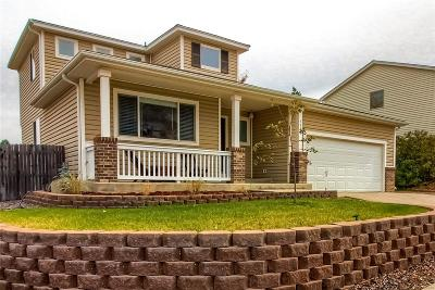 Littleton Single Family Home Active: 7340 Turkey Rock Road