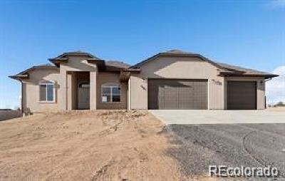 Pueblo Single Family Home Active: 24156 Gale
