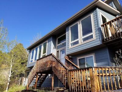 Conifer Single Family Home Under Contract: 31061 Pike View Drive