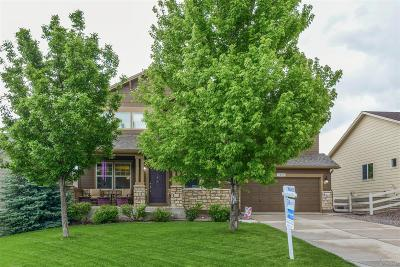 Crystal Valley Ranch Single Family Home Under Contract: 3884 Deer Valley Drive