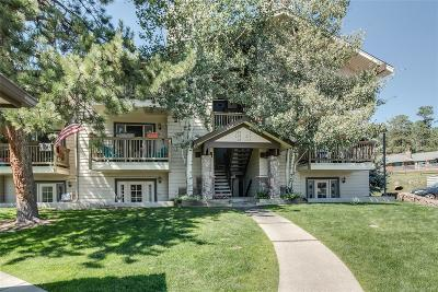 Evergreen Condo/Townhouse Under Contract: 29656 Buffalo Park Road #209