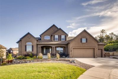 Monument Single Family Home Active: 216 Kettle Valley Way