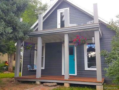 Steamboat Springs Single Family Home Active: 153 Logan Avenue
