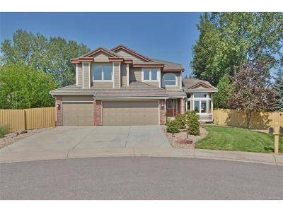 Superior Single Family Home Under Contract: 1313 South Gibson Court