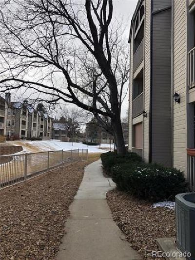 Englewood Condo/Townhouse Active: 9110 East Arbor Cir #L