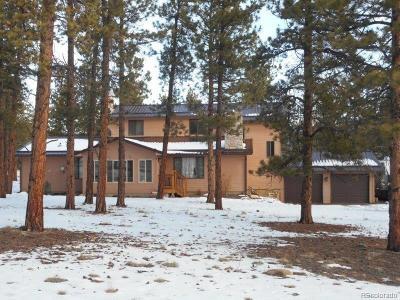 Buena Vista CO Single Family Home Active: $399,000