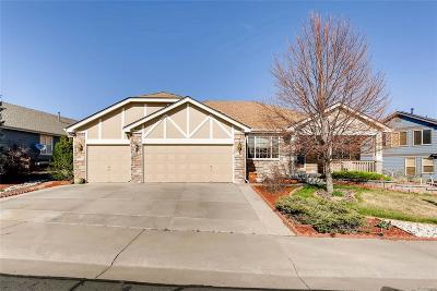 Red Hawk Single Family Home Under Contract: 1473 Rosemary Drive