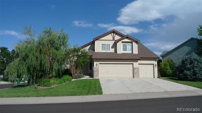 Castle Rock Single Family Home Active: 5092 Buttercup Drive