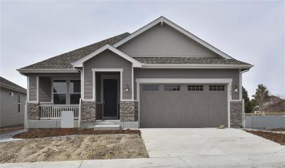 Castle Rock Single Family Home Active: 4328 Broken Hill Circle