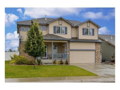 Johnstown Single Family Home Under Contract: 3397 Shadbush Street