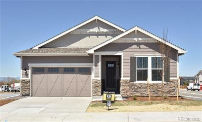 Castle Rock Single Family Home Active: 4290 Forever Circle