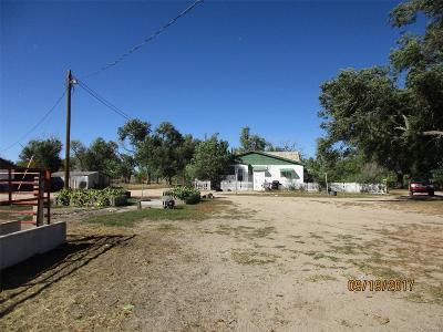 Peyton Single Family Home Active: 5330 J D Johnson Road