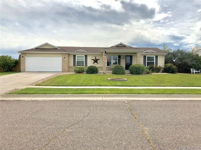 Elbert County Single Family Home Under Contract: 394 Shasta Court