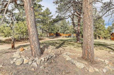 Evergreen Single Family Home Active: 6151 Highway 73