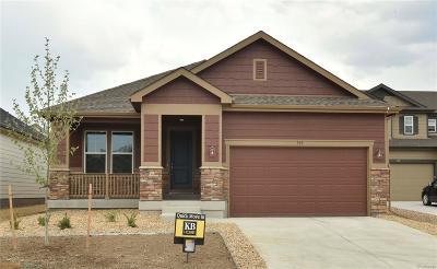 Castle Rock Single Family Home Active: 360 Tippen Place