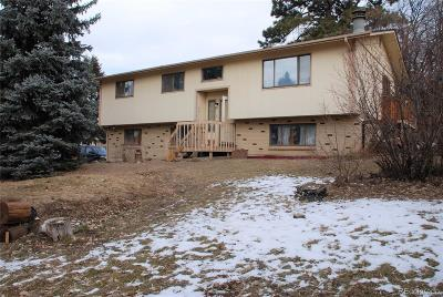 Castle Rock Single Family Home Active: 1104 Bulkey Street