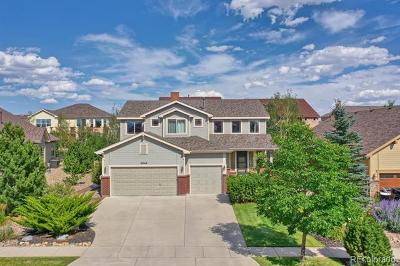 Colorado Springs Single Family Home Active: 8845 Rory Creek Street