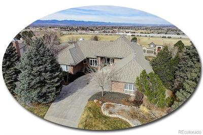 Highlands Ranch Single Family Home Active: 43 Falcon Hills Drive