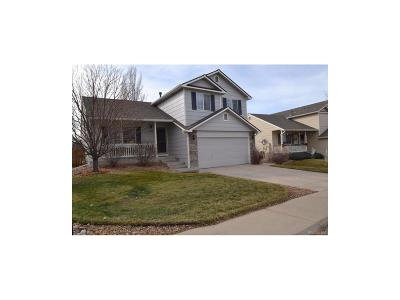 Castle Rock Single Family Home Under Contract: 3654 Rawhide Circle