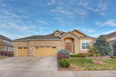 Aurora Single Family Home Under Contract: 6562 South Ouray Way