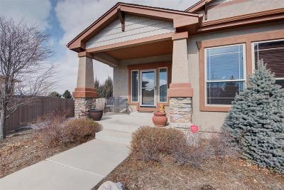 Colorado Springs Single Family Home Under Contract: 9577 Pancake Rocks Trail