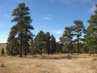 Parker Residential Lots & Land Active: 00015 Shadow Pines Road