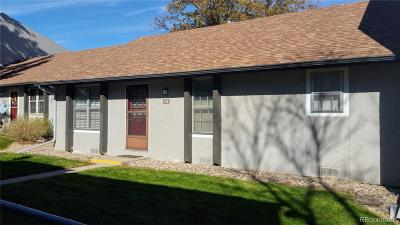 Centennial Condo/Townhouse Under Contract: 7165 South Gaylord Street #I01