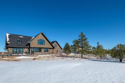 Elbert CO Single Family Home Active: $899,000