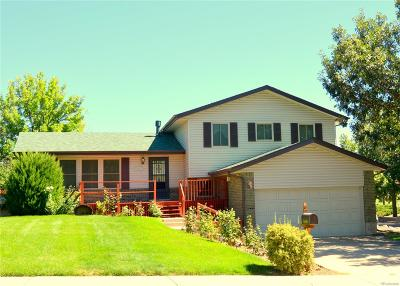 Arvada Single Family Home Active: 5802 Queen Street
