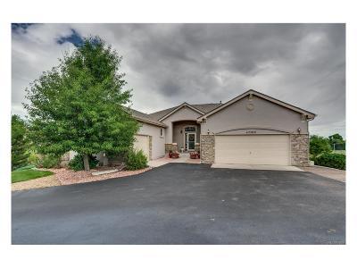 Elbert County Single Family Home Active: 42289 Kingsmill Circle