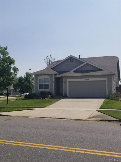 Denver Single Family Home Active: 20990 East 42nd Avenue