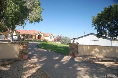 Pueblo Single Family Home Active: 2071 41 1/2 Lane