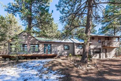 Evergreen Single Family Home Under Contract: 276 Echo Lake Drive
