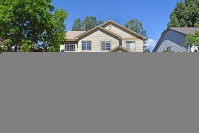 Superior Single Family Home Under Contract: 1305 South Boyero Court