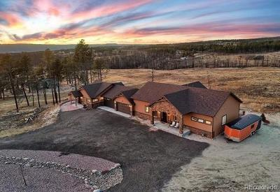 Colorado Springs Single Family Home Active: 6610 Trappers Pass Trail