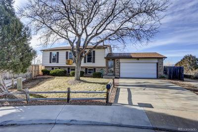 Broomfield Single Family Home Active: 3372 West 10th Avenue Place