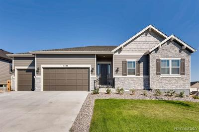 Single Family Home Active: 6530 South Addison Way