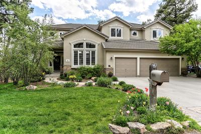 Castle Rock Single Family Home Active: 564 Tolland Drive