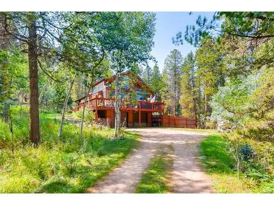 Conifer Single Family Home Under Contract: 11793 Meadow Drive