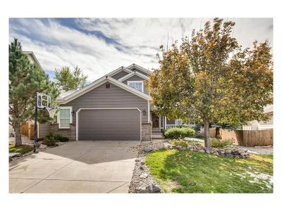 Castle Rock Single Family Home Active: 3674 Rawhide Circle
