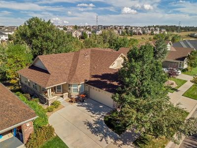 Heritage Eagle Bend Condo/Townhouse Under Contract: 7838 South Buchanan Way