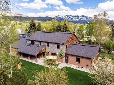 Steamboat Springs CO Single Family Home Active: $1,699,000