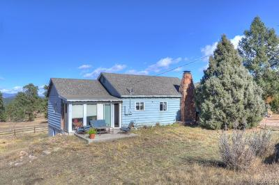 Conifer, Evergreen Single Family Home Under Contract: 28121 Wonderview Avenue