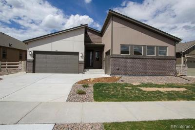 Littleton Single Family Home Active: 7880 Owl Creek Circle