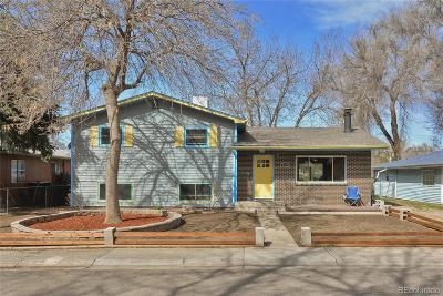 Longmont Single Family Home Under Contract: 745 Rees Court